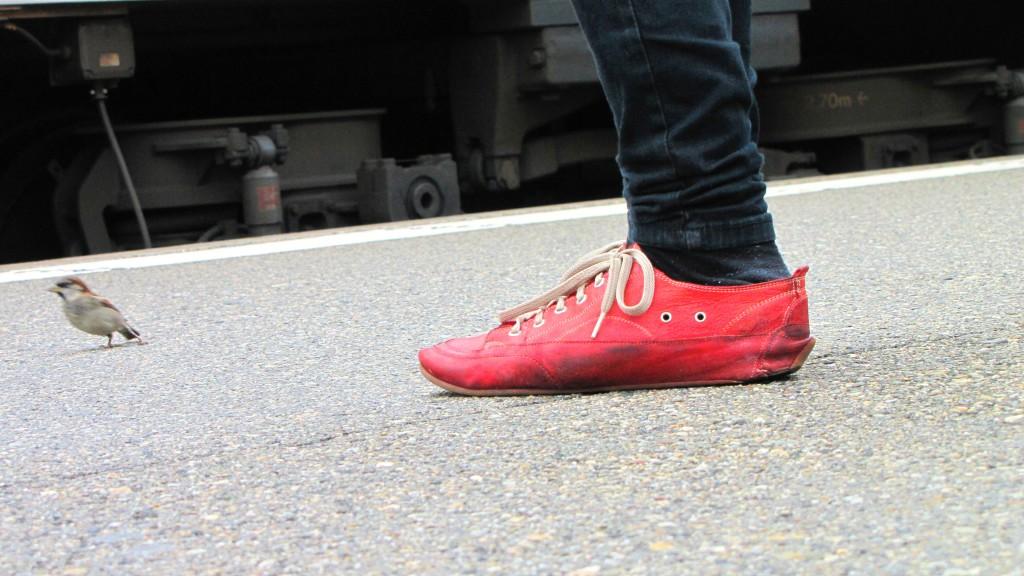oiseau et chaussure rouge